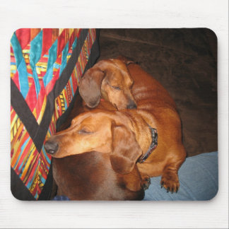 Harley and Toby - I Got Your Back mousepad