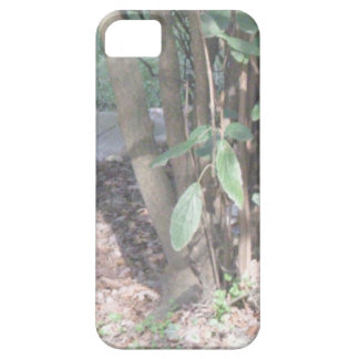 Harmony Barely There iPhone 5 Case