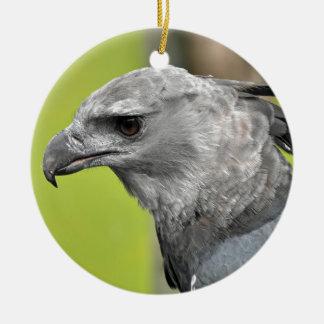 Harpy Eagle 2.JPG Round Ceramic Decoration
