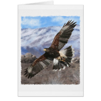 Harris Hawk- pastel Card