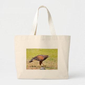 Harris Hawk walking on grass Large Tote Bag