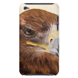 Harris Hawk Watching Case-Mate iPod Touch Case