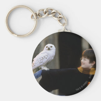 Harry and Hedwig 3 Key Ring