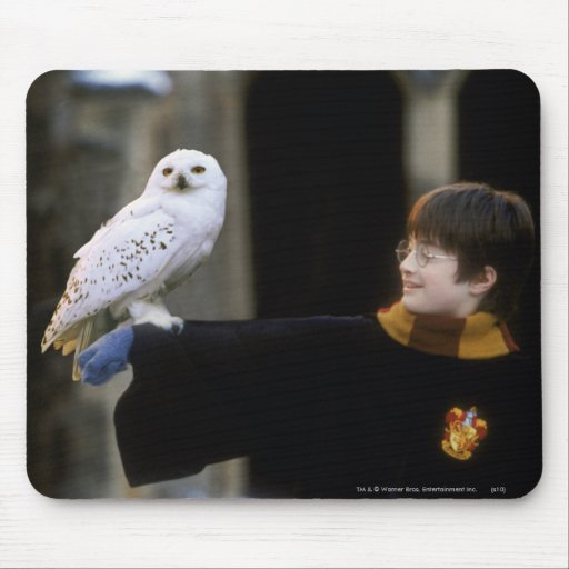 Harry and Hedwig 3 Mouse Pad