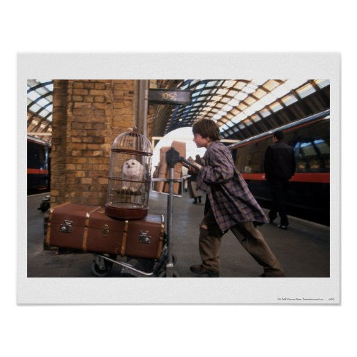 Harry and Hedwig Platform 9 3/4 Poster