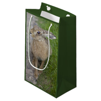Harry Hare Gift Bag