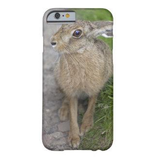 Harry Hare iPhone 6 Case