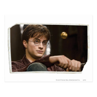 Harry Potter 17 Postcard