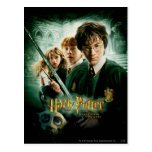 Harry Potter Ron Hermione Dobby Group Shot Post Card
