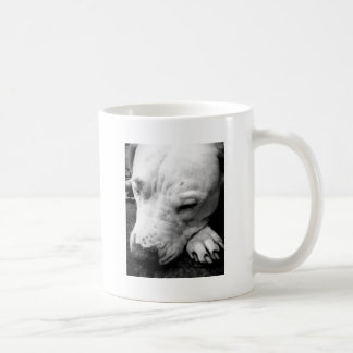 harry potter scar dog white pit bull coffee mug
