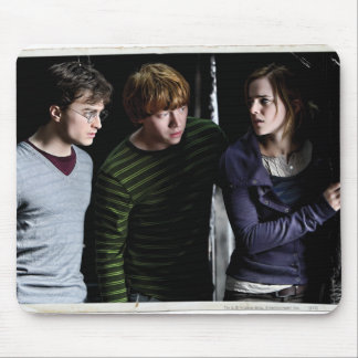 Harry, Ron, and Hermione 4 Mouse Pad