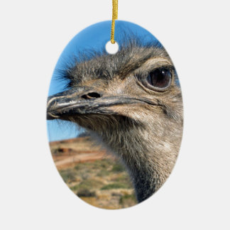 Harry the Happy Ostrich Ceramic Ornament