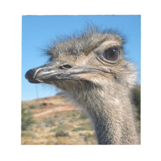 Harry the Happy Ostrich Notepad