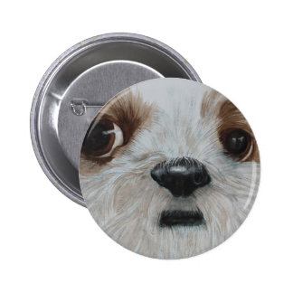 Harry the Shih Tzu 6 Cm Round Badge
