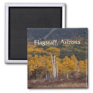Hart  Prairie Flagstaff, Arizona Magnet