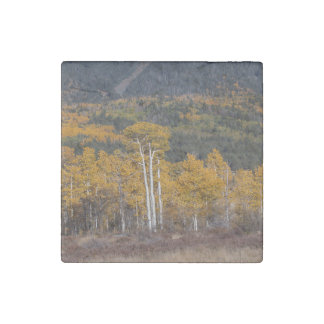 Hart  Prairie Stone Magnet