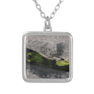 Hart's Tongue Fern Necklace