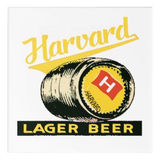 Harvard Lager Beer Acrylic Print