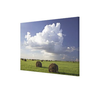 Harvest fields with storm clouds, Heidelberg Canvas Print