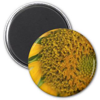 Harvest Flower magnet