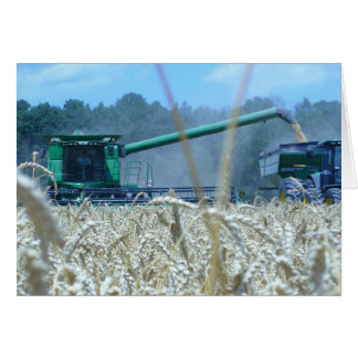 Harvest Greeting Card from the Farm