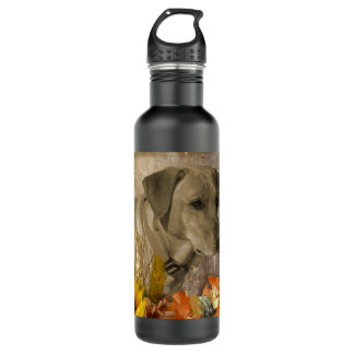 Harvest Labrador Retriever 710 Ml Water Bottle