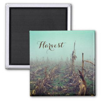 Harvest Magnet