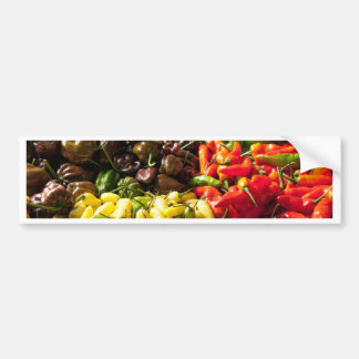 Harvest of Chilies Bumper Sticker