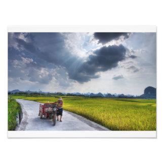 Harvest time photo print