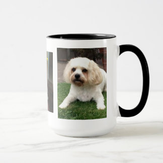 Harvey the Cavahon Mug