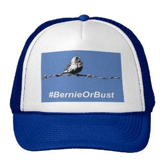 Hat Bernie Or Bust