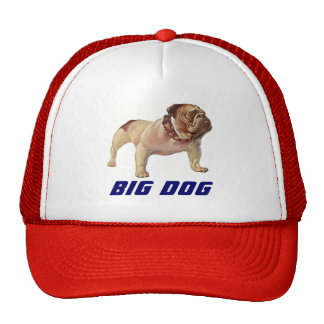 HAT BIG DOG Bulldog OTR Trucking Trucker's Mover's