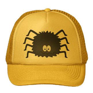 Hat Boy Spider