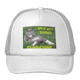 Hat Cat Yoga