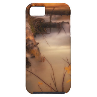 Hat Creek in Gold Tough iPhone 5 Case