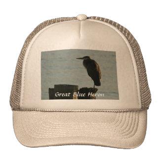 Hat:  Great Blue Heron