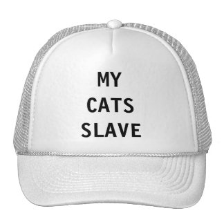 Hat My Cats Slave