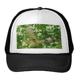 Hat/ Red Tailed Hawk in flight