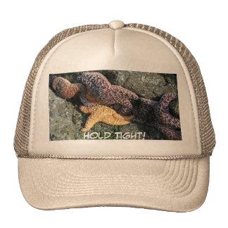 Hat:  Starfish Cap