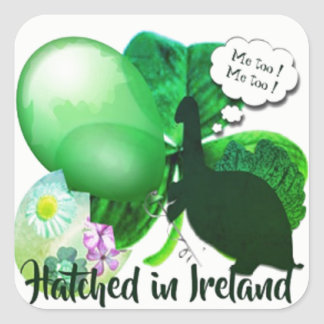 Hatched in Ireland Square Sticker