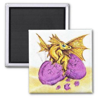 Hatching Bronze Dragon Magnet