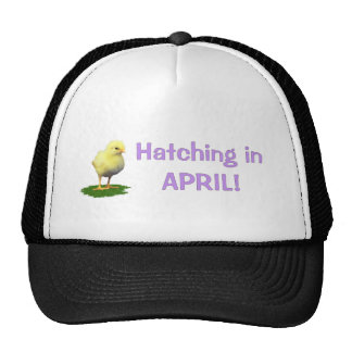 Hatching in April! Maternity/Pregnant Due In April Cap