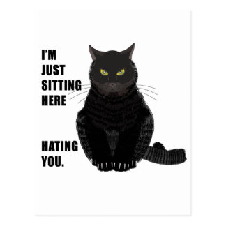 Hating You Postcard