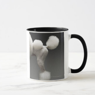 Haunches of Poodle, on grey background Mug