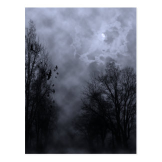 Haunted Halloween Sky with Ravens Postcard