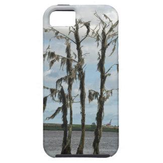 Haunted Swamp Tree iPhone 5 Cases