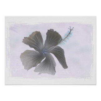 Haunting Image of a Hibiscus flower Print