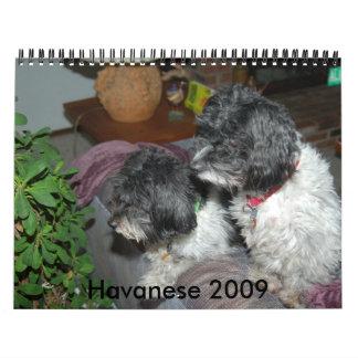 Havanese 2009 calendar