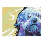 Havanese Dog fun pop art Postcard