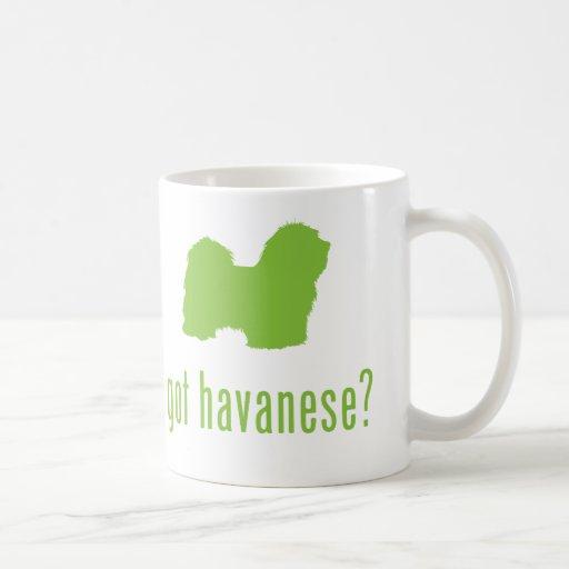 Havanese Mugs